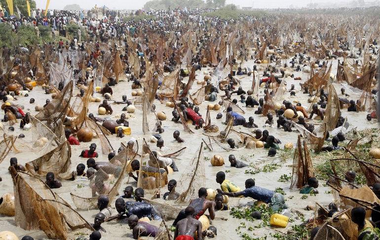 Фестиваль рыбной ловли (Нигерия)
